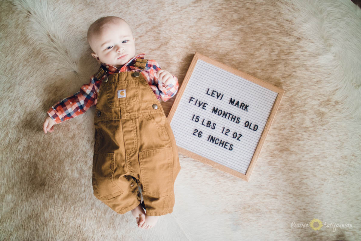 Levi is Five Months